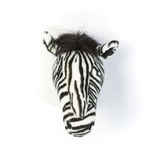 Daniel le zèbre - Wild & Soft